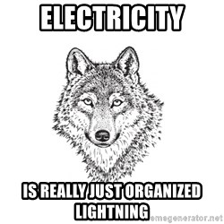 Sarcastic Wolf - Electricity is really just organized lightning