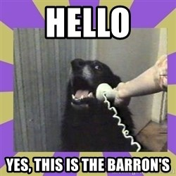 Yes, this is dog! - Hello Yes, this is the Barron's