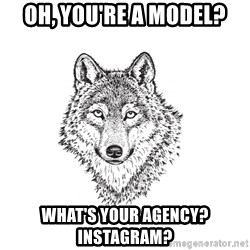 Sarcastic Wolf - Oh, you're a model? what's your agency? instagram?