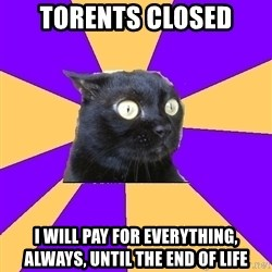Anxiety Cat - torents closed I will pay for everything, always, until the end of life