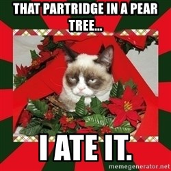 GRUMPY CAT ON CHRISTMAS - That partridge in a pear tree... i ate it.