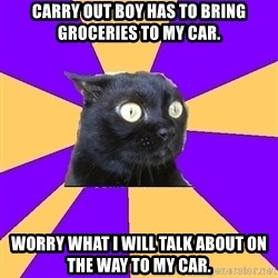 Anxiety Cat - Carry out boy has to bring groceries to my car. Worry what I will talk about on the way to my car.