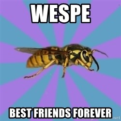 kyriarchy wasp - Wespe Best friends forever