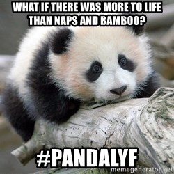 sad panda - What if there was more to life than naps and bamboo? #PANDALYF
