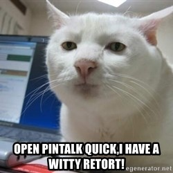 Serious Cat -  Open Pintalk quick,I have a witty retort!
