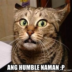 Serious Cat -  ang humble naman :P
