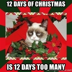 GRUMPY CAT ON CHRISTMAS - 12 days of Christmas is 12 days too many