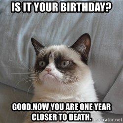 good grumpy cat 2 - Is it your birthday? good.now you are one year closer to death.