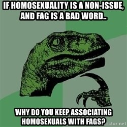 Philosoraptor - If Homosexuality is a non-issue, and fag is a bad word.. Why do you keep associating homosexuals with fags?