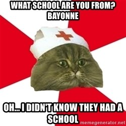 Nursing Student Cat - What school are you from? Bayonne Oh... I didn't know they had a school