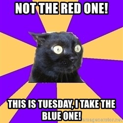 Anxiety Cat - not the red one! this is tuesday, i take the blue one!