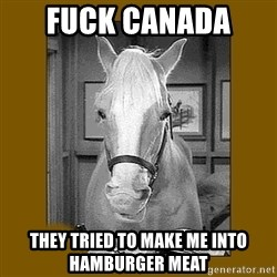 Mr. Ed 2.0 - Fuck Canada  They tried to make me into hamburger meat