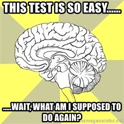 Traitor Brain - THIS TEST IS SO EASY...... .....WAIT, WHAT AM I SUPPOSED TO DO AGAIN?