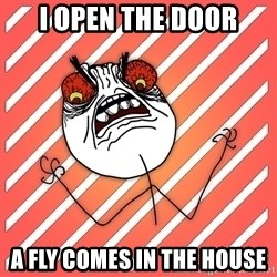 iHate - i open the door a fly comes in the house