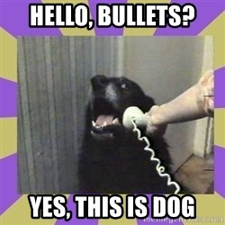 Yes, this is dog! - hello, bullets? yes, this is dog