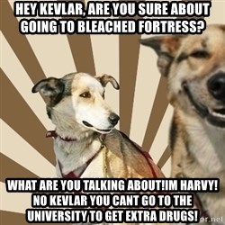 Stoner dogs concerned friend - hey kevlar, are you sure about going to bleached fortress? what are you talking about!Im harvy! no kevlar you cant go to the university to get extra drugs!