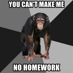 Drunken Monkey - you can't make me no homework