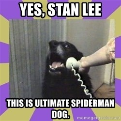 Yes, this is dog! - YES, STAN LEE THIS IS ULTIMATE SPIDERMAN DOG.