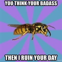 kyriarchy wasp - You think your badass Then I ruin your day