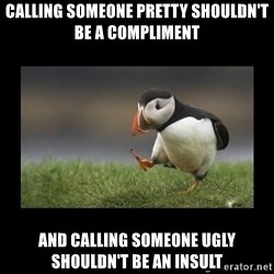 Shufflin' Puffin - Calling someone pretty shouldn't be a compliment And Calling someone ugly shouldn't be an insult