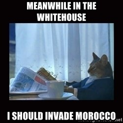 i should buy a boat cat - Meanwhile in the whitehouse I should invade Morocco