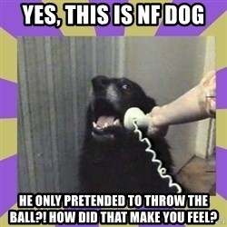 Yes, this is dog! - Yes, This is NF Dog He only pretended to throw the ball?! How did that make you feel?