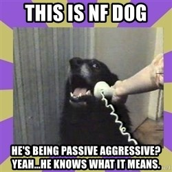Yes, this is dog! - This is NF Dog He's being passive aggressive? Yeah...he knows what it means.
