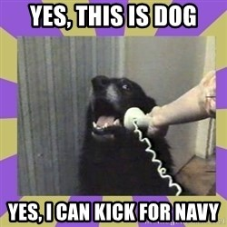 Yes, this is dog! - YES, THIS IS DOG YES, I CAN KICK FOR NAVY