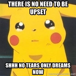 Sad pikachu - There is no need to be upset Shhh No tears only dreams now