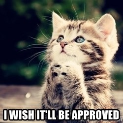 good luck cat -  i wish it'll be approved