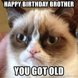 Angry Cat Meme - happy birthday brother you got old