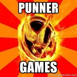 Typical fan of the hunger games - punner games