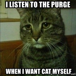 Depressed cat 2 - i listen to the purge  when i want cat myself