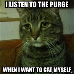 Depressed cat 2 - I listen to the purge when i want to cat myself