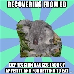 Clinically Depressed Koala - recovering from ed depression causes lack of appetite and forgetting to eat