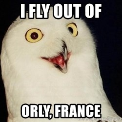 Orly Owl - I fly out of  Orly, France