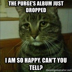 Depressed cat 2 - the purge's album just dropped i am so happy. can't you tell?