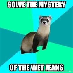 Obvious Question Ferret - Solve the mystery  Of the wet jeans