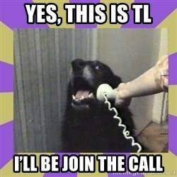 Yes, this is dog! - Yes, this is TL I'll be join the call