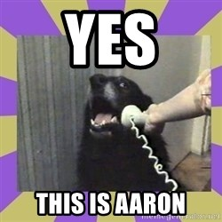 Yes, this is dog! - Yes This is aaron