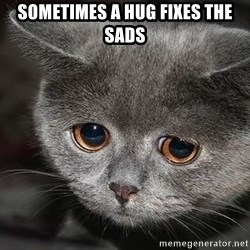 sad cat - Sometimes a hug fixes the sads