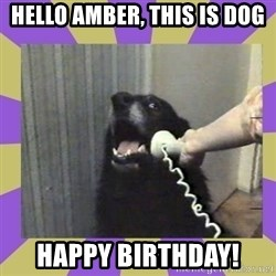 Yes, this is dog! - HELLO AMBER, THIS IS DOG HAPPY BIRTHDAY!