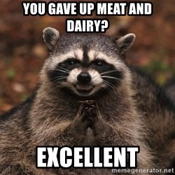 racoon - you gave up meat and dairy? excellent