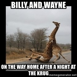 Trust Fall Giraffes - Billy and WAYNE ON THE WAY HOME AFTER A NIGHT AT THE KRUG