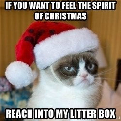 Grumpy Cat Santa Hat - If you want to feel the spirit of christmas Reach into my litter box