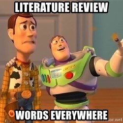 Woody & Buzz... Everywhere - literature review words everywhere
