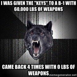 """Insanity Wolf - I was given the """"keys"""" to a b-1 with 60,000 lbs of weapons  came back 4 times with 0 lbs of weapons"""