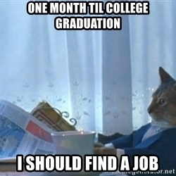 Boat cat meme - ONe month til college graduation I should find a job