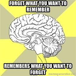 Traitor Brain - forget what you want to remember remembers what you want to forget
