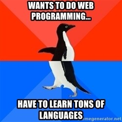 Socially Awkward Penguin (Red Top) - wants to do web programming... have to learn tons of languages